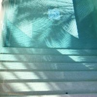 Fotografie Swimmingpool mit Palmenschatten